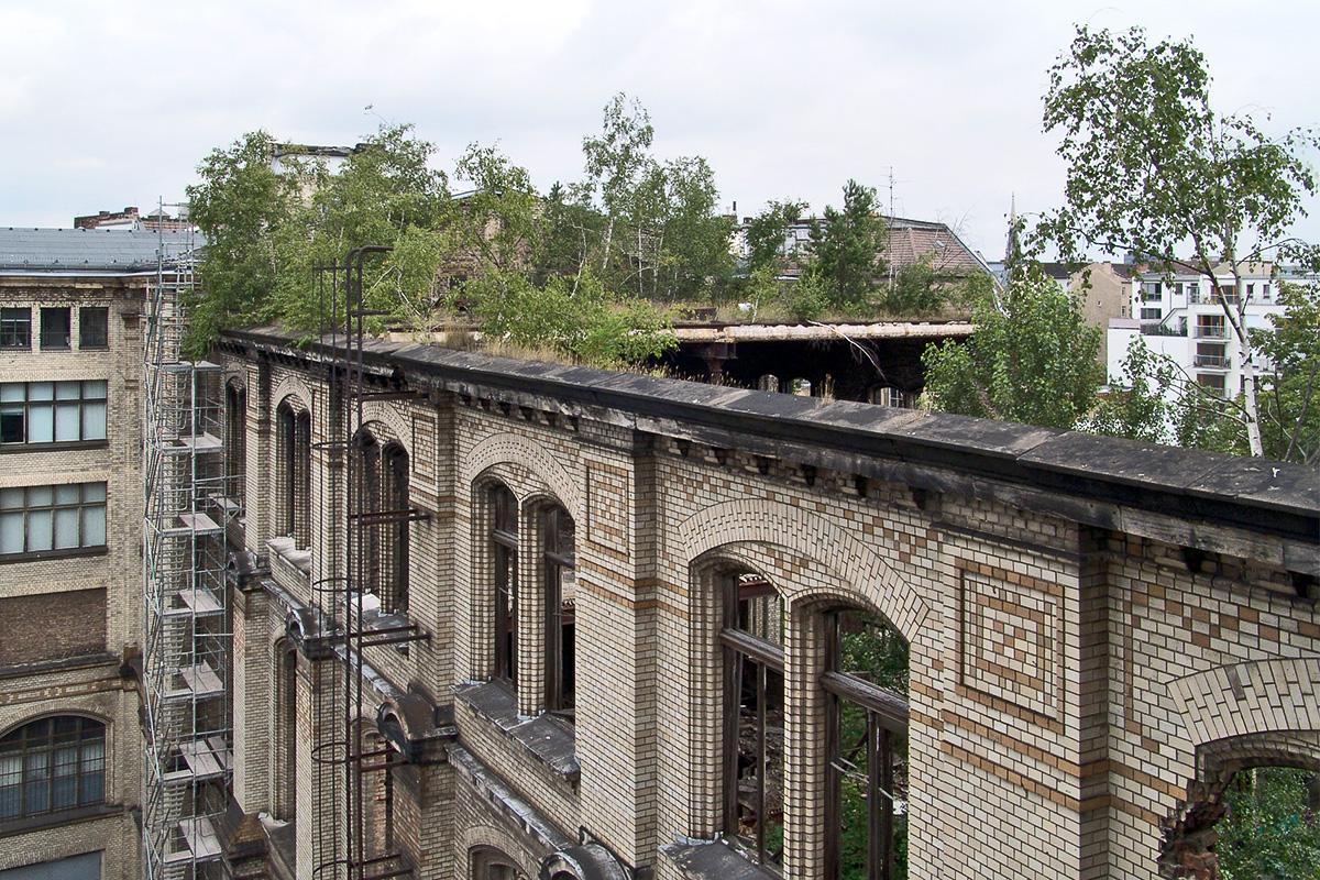Ruine des Ostflügels vor Beginn der Wiederaufbauarbeiten