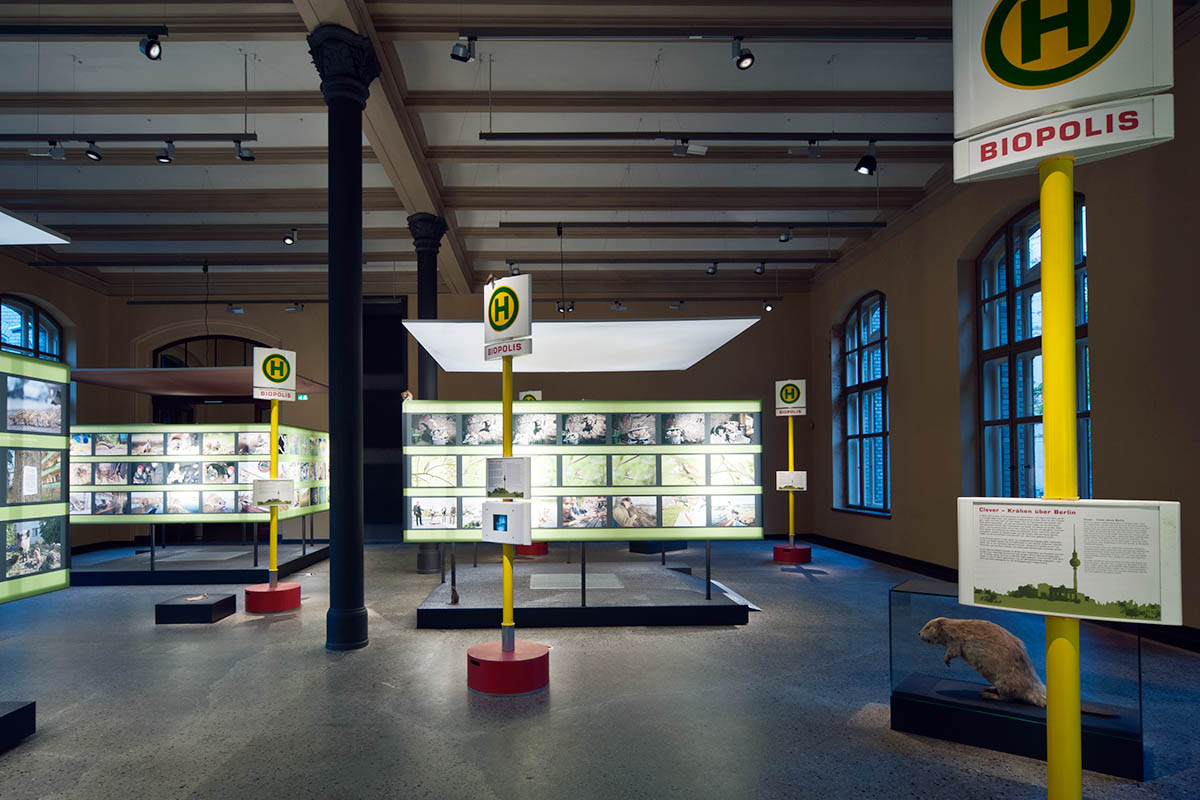 Das Foto gibt einen Einblick in die Ausstellung, viele Berliner Bushaltestellen-Schilder mit Informationstexten prägen die Ausstellungsgestaltung.