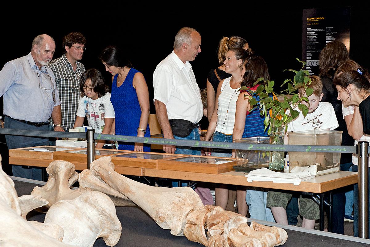 Das Foto zeigt Besucherinnen und Besucher in der Ausstellung des Museums für Naturkunde während der Langen Nacht der Museen.