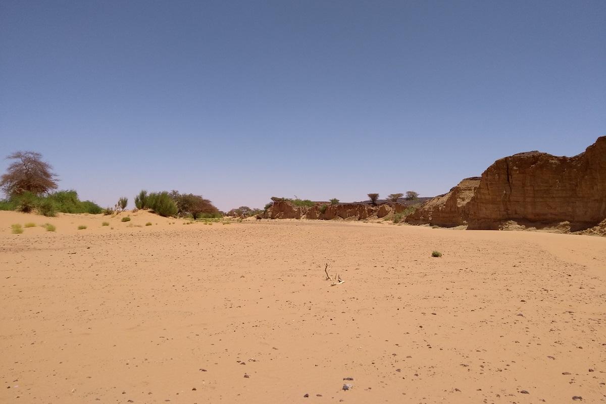 In diesem nur nach starken Regenfällen wasserführenden Flussbett in Sudan wurden Fossilien entdeckt. Die Fundstelle liegt am Felsen rechts im Bild. Foto: Clement Coiffard/Museum für Naturkunde Berlin