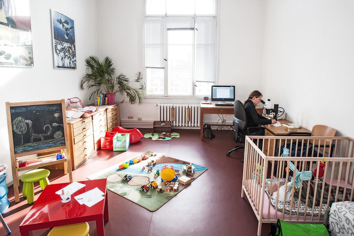 Familienzimmer als Arbeitsplatz im Museum für Naturkunde