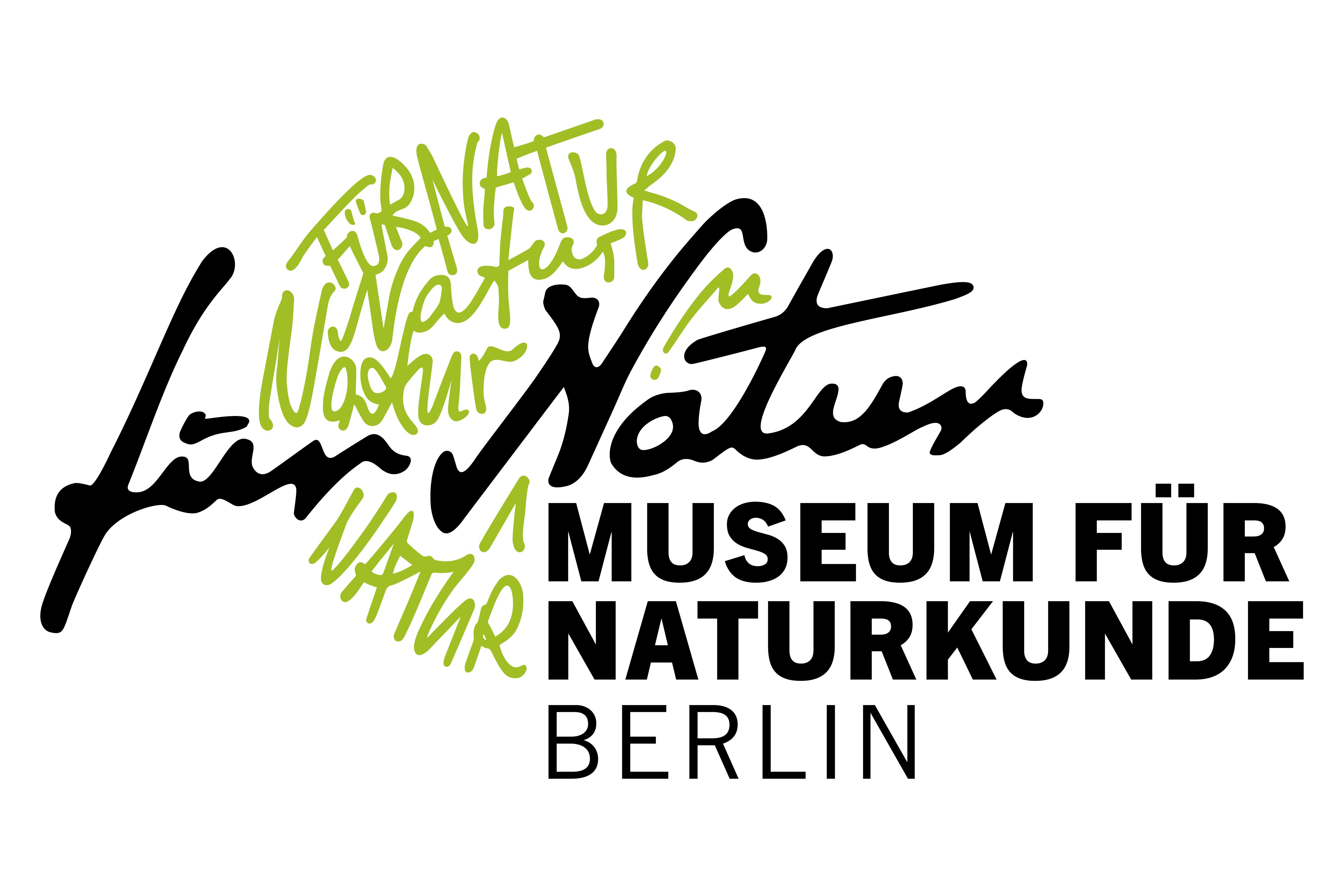 seit wann gibt es bl tenpflanzen und wo lebten sie naturkundemuseum berlin. Black Bedroom Furniture Sets. Home Design Ideas
