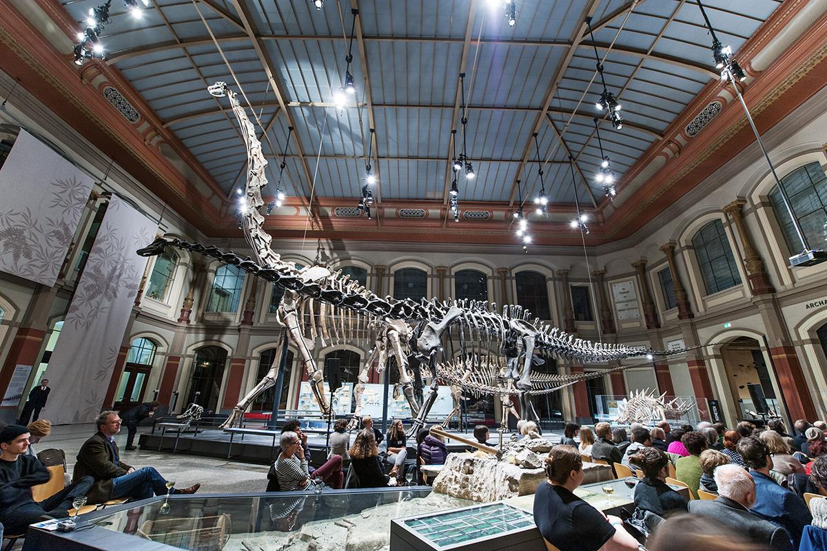 Filmzuschauer im Dinosauriersaal des Museums für Naturkunde
