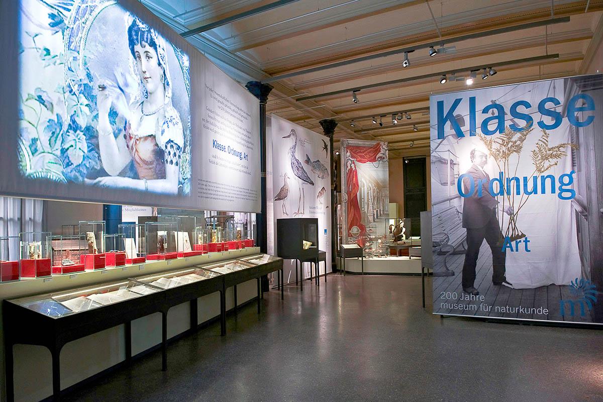 Das Foto gibt einen Einblick in die Ausstellung.