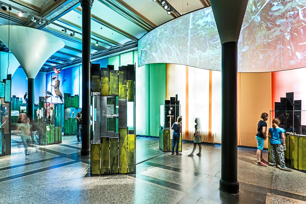 Einblick in die Sonderausstellung Ara des Museums für Naturkunde Berlin