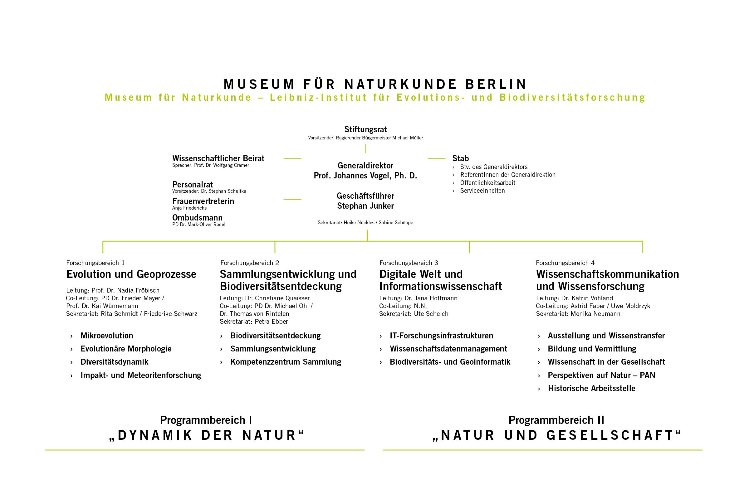 Organigramm des Museums für Naturkunde Stand Januar 2018