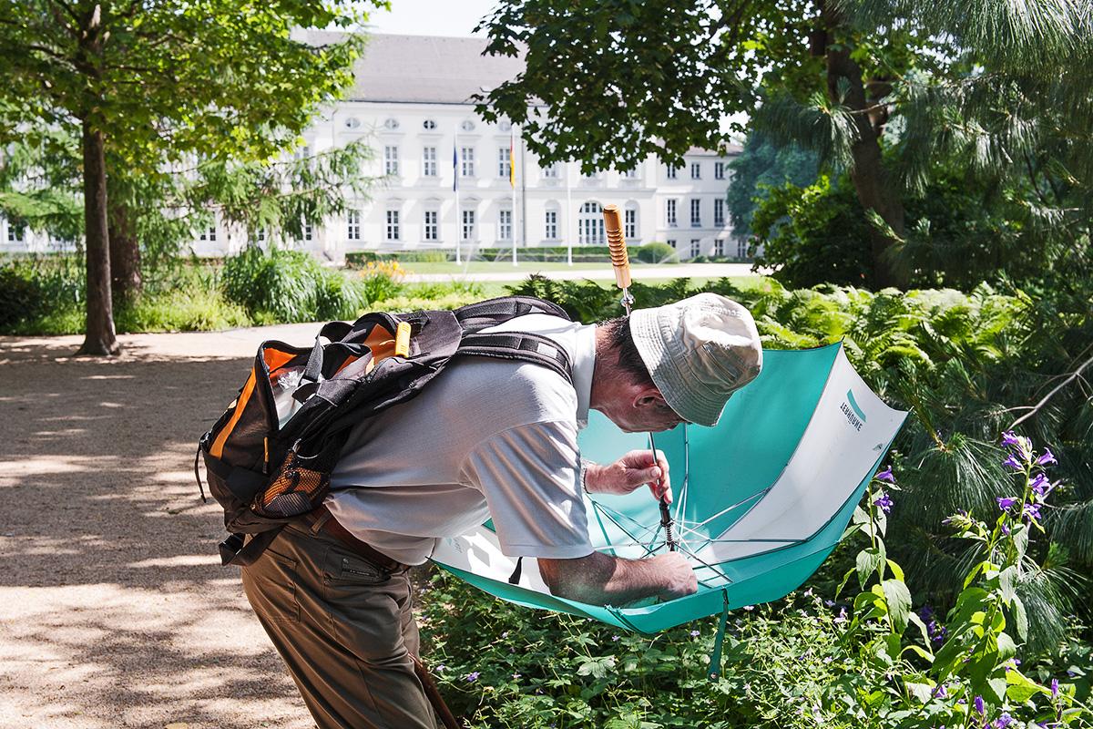 Mann beim Insektensammeln