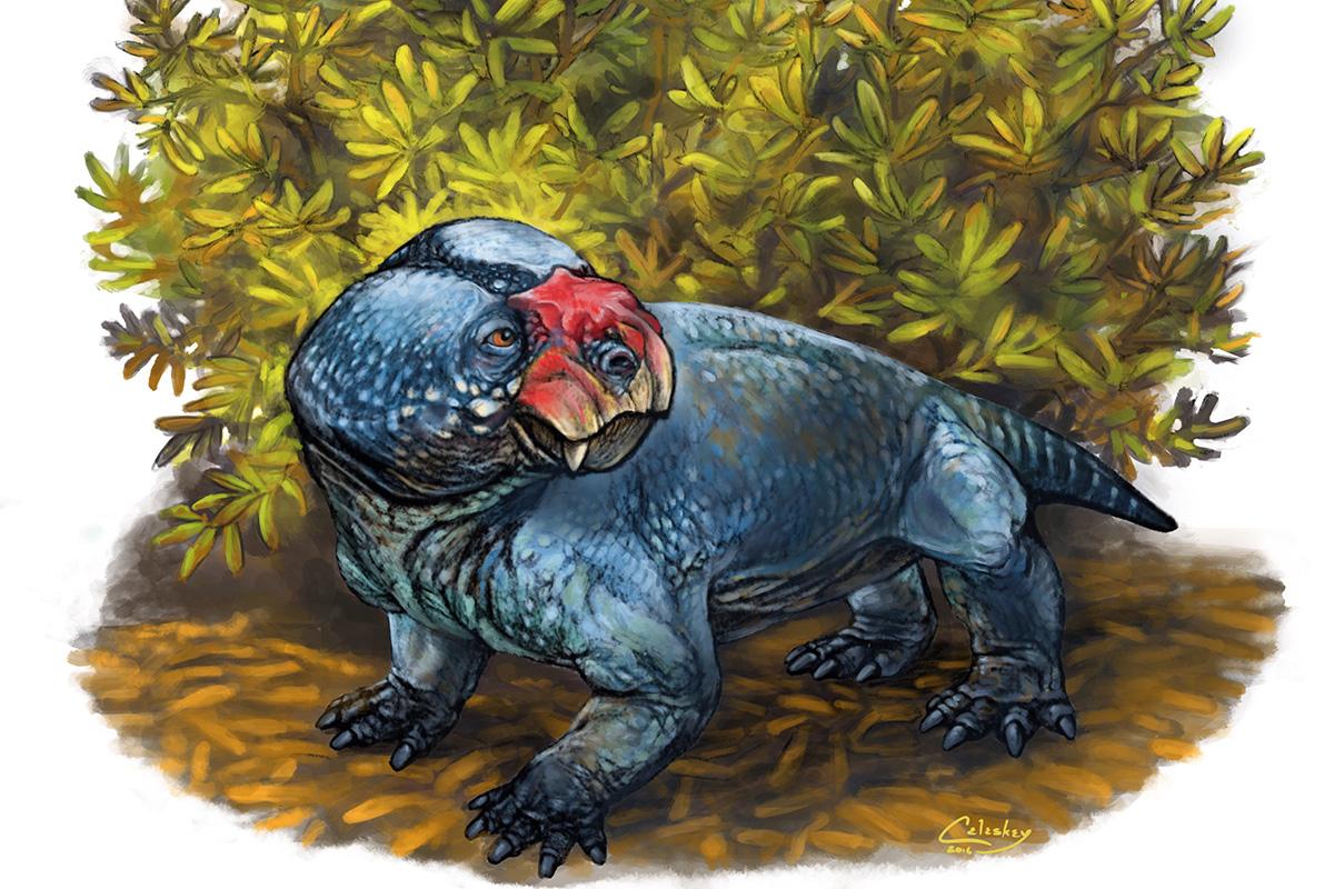 Bulbasaurus