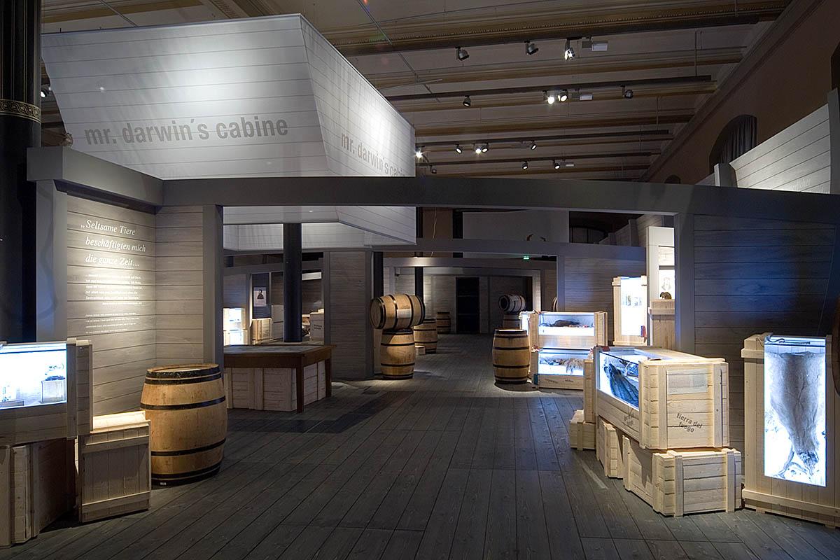 """Das Foto gibt einen Einblick in die Ausstellung, die Ausstellungsgestaltung erinnert an den Rumpf Darwins Forschungsschiffs """"Beagle""""."""