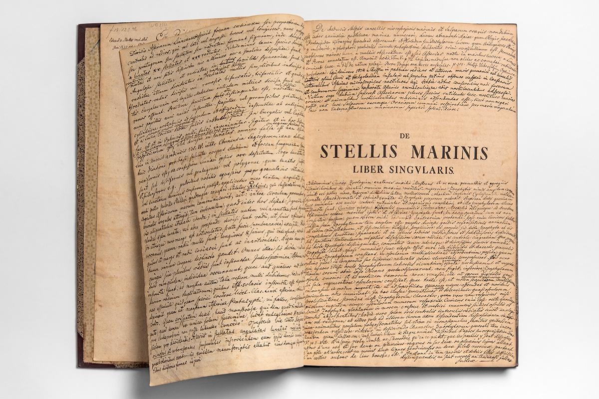 """Aufgeschlagene mit Notizen versehene Seite von der Ausgabe von """"De Stellis Marines"""" der Bibliothek im Museum für Naturkunde, Foto: Carola Radke / MfN"""