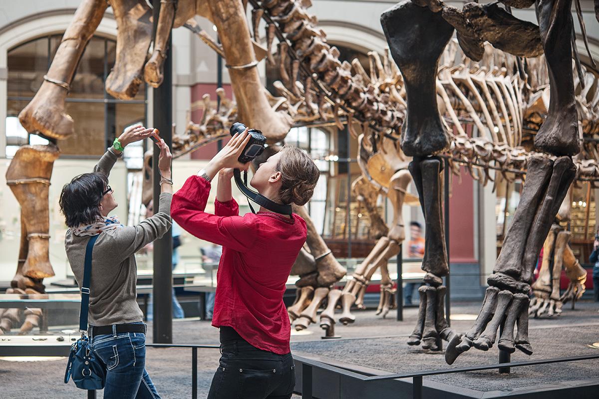 Zwei Besucherinnen fotografieren den Dinosaurier Brachiosaurus brancai