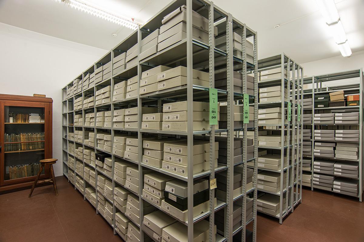 Magazinraum der Historischen Arbeitsstelle des Museums für Naturkunde Berlin