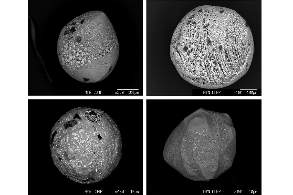 hausprojekt-mikrometeorite-elektronenmikroskop_c_Thilo_Hasse_mfn.jpg