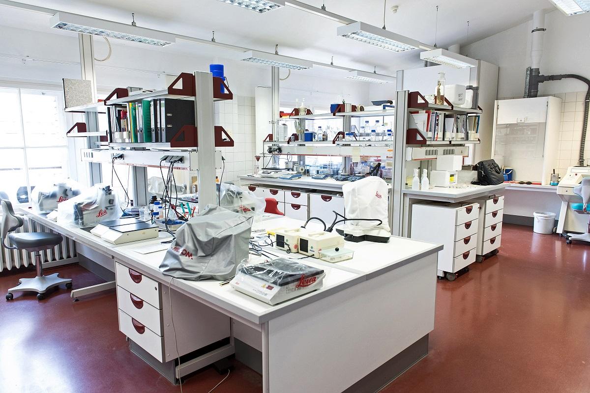 Im Histologielabor des Integrierten Zoologischen Forschungslabors werden Gewebe von Organismen untersucht. Foto: Hwa Ja Götz/Museum für Naturkunde Berlin