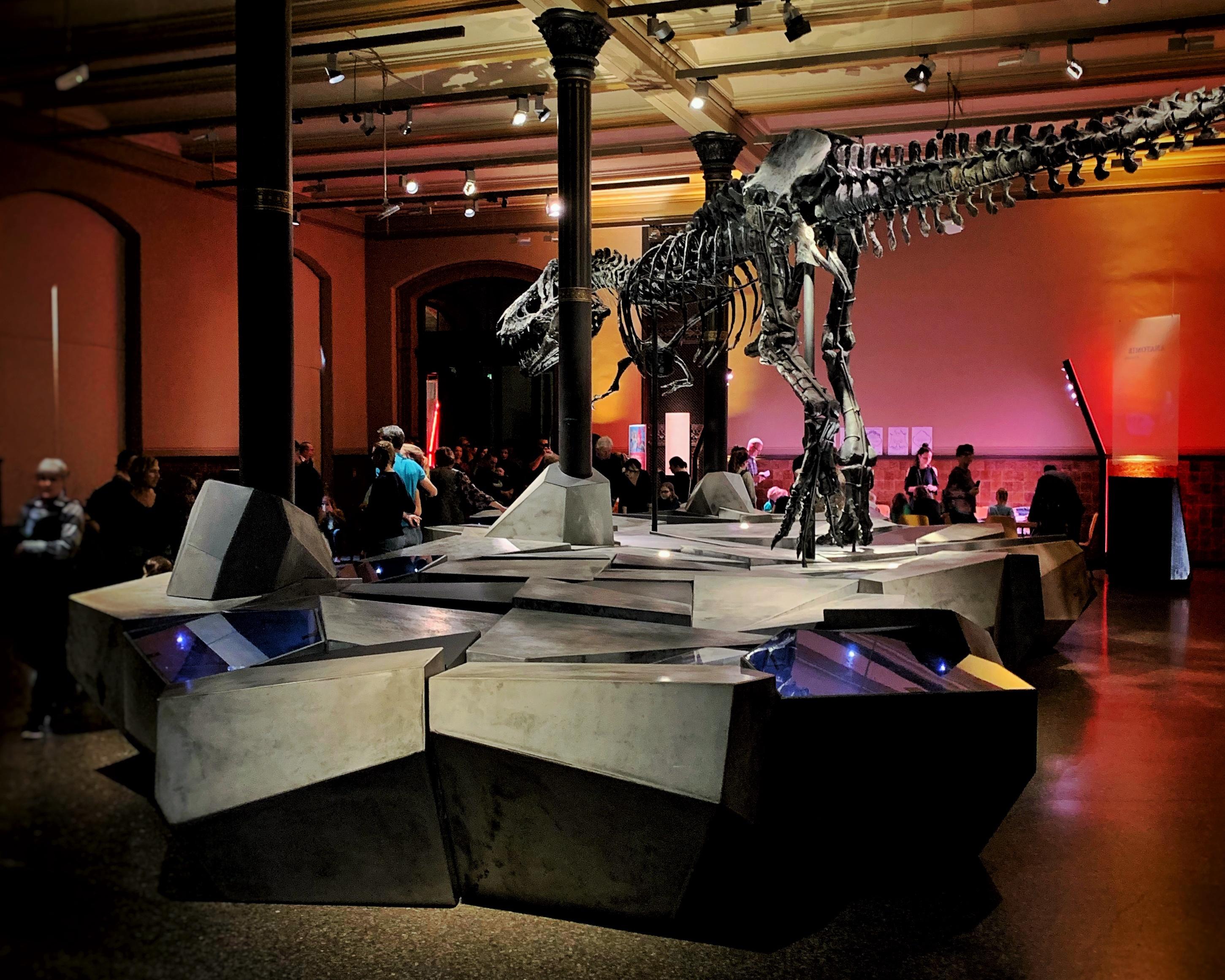 Kinderfest im Museum für Naturkunde