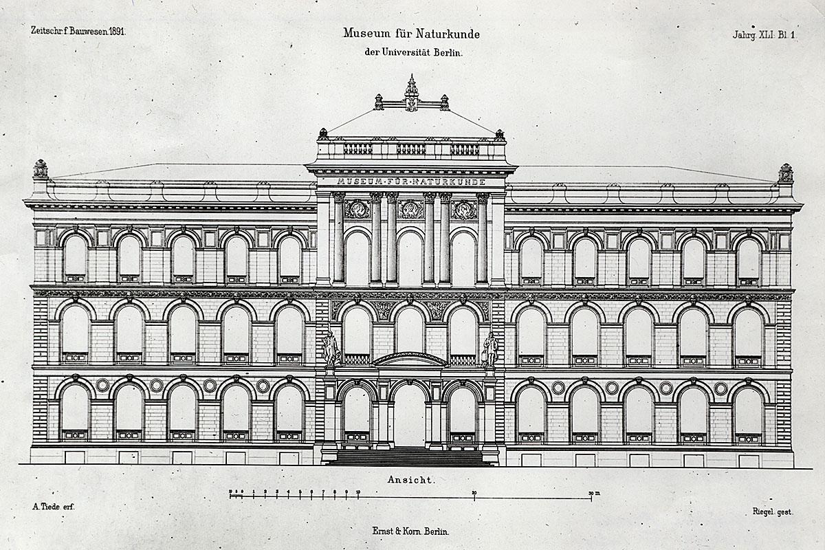 Das Foto zeigt das Museum für Naturkunde Berlin in Vorderansicht ohne die Seitenflügel im Maßstab 1 : 100.