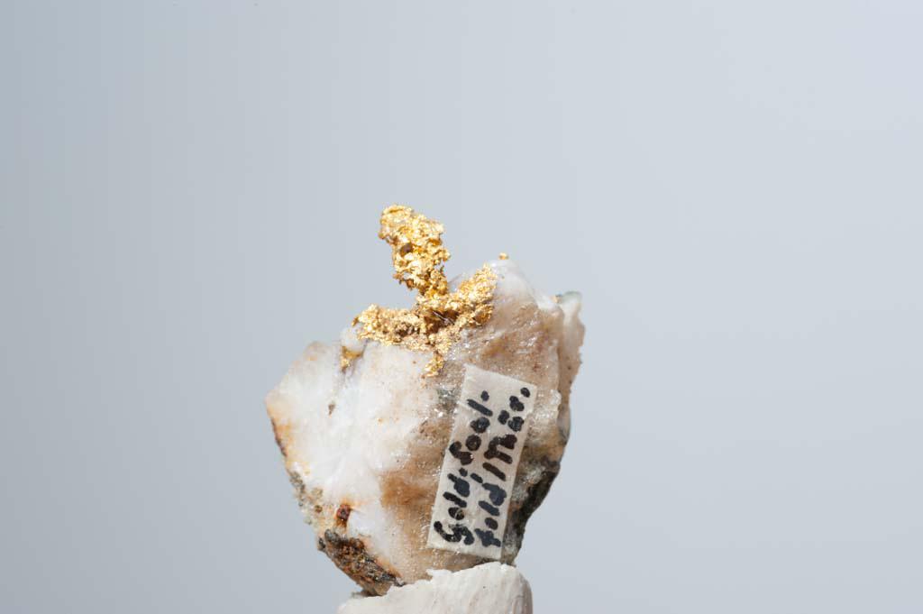 Dieses Foto zeigt Gold zusammen mit Quarz aus einem Goldquarzgang