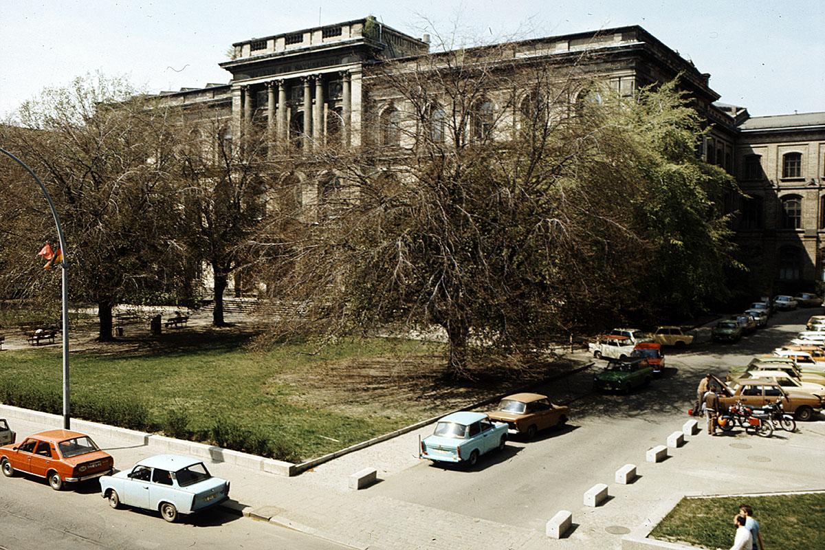 Das Foto zeigt das Museum für Naturkunde Berlin mit davor parkenden Autos.