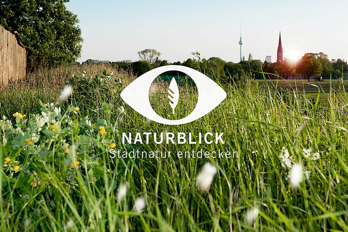 App Naturblick, Foto: Torben Geek