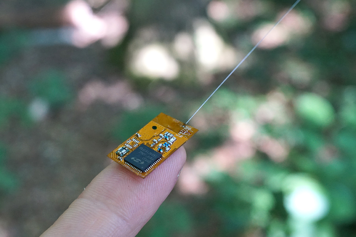 wireless sensor node for automated encounter detection and tracking of bats