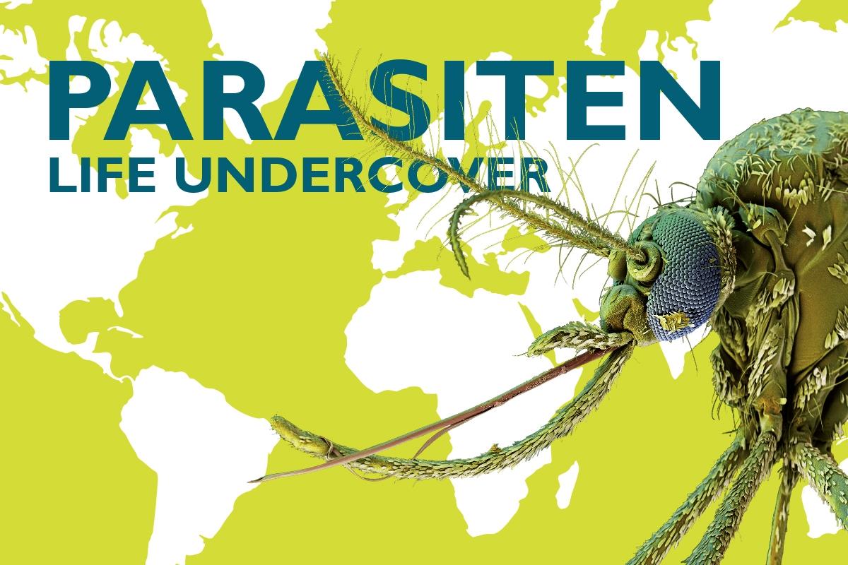 Parasites – Life Undercover