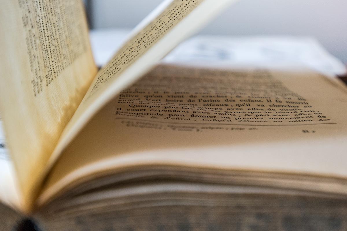 Detailansicht eines aufgeschlagenen Buches, Foto: Carola Radke
