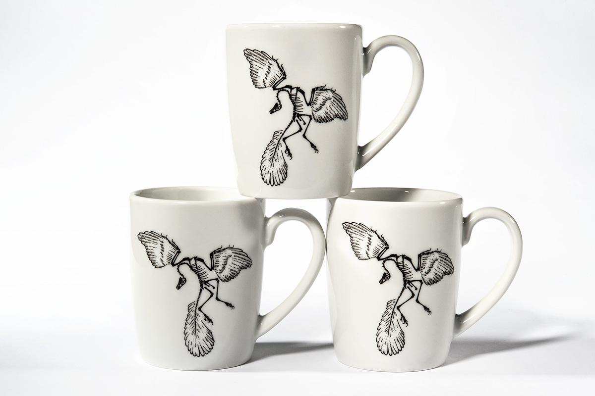 Drei Tassen mit Illustration des Urvogels Archaeopteryx