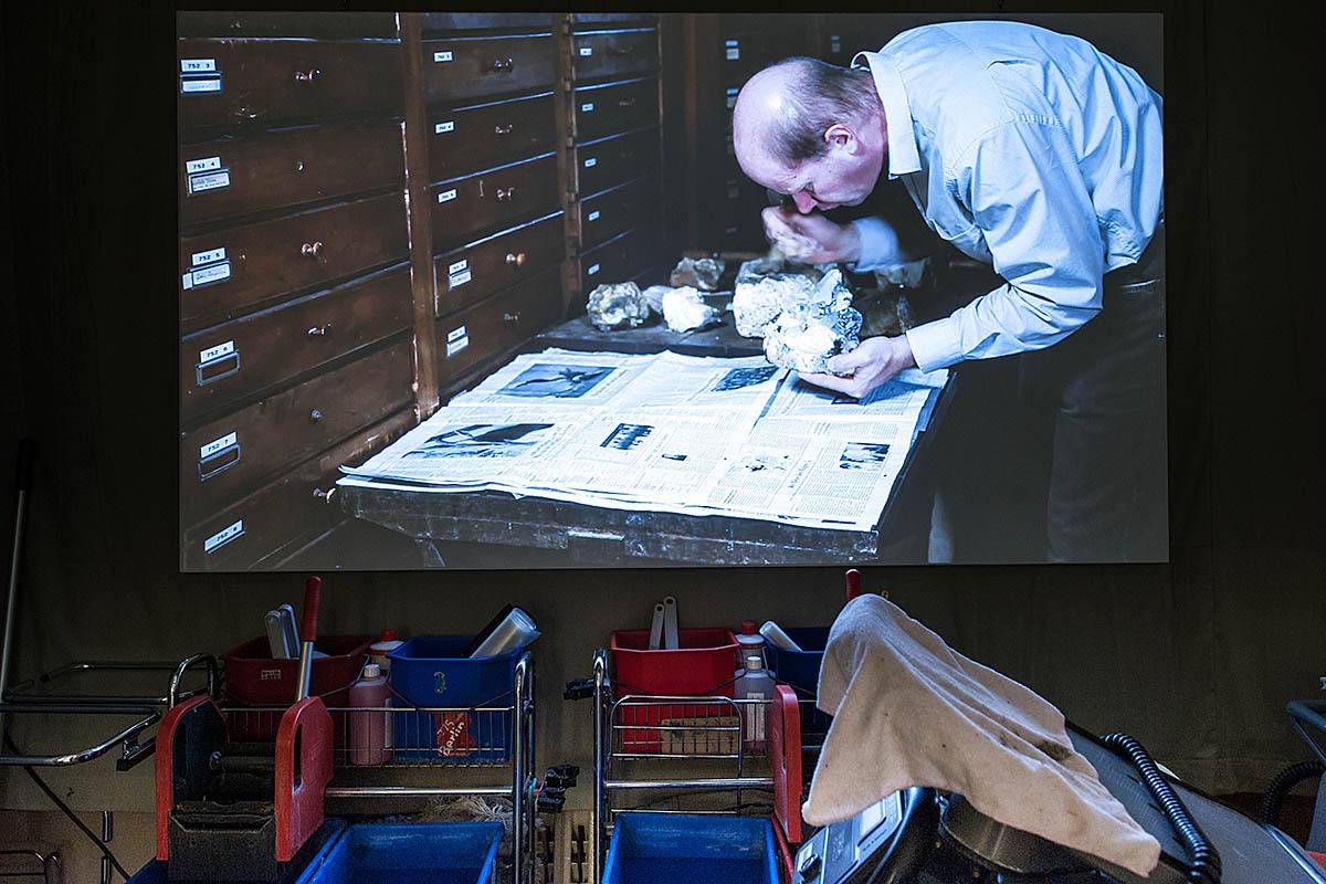 """Das Foto zeigt einer Installation aus """"Tote Wespen fliegen länger""""."""