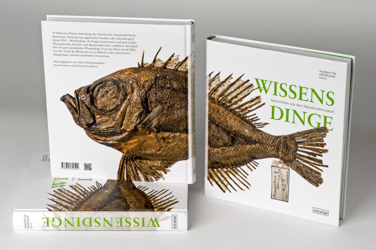 Buch Wissensdinge, Umschlag vorn und hinten